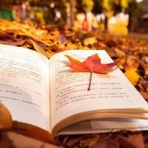 知識より体得を重視する‐読書の秋